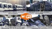 Билеты на автобус Минск - Одесса / Затока - Минск